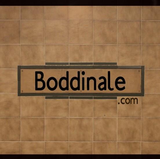 Boddinale 2015